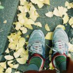 【プレイバックFPB】 第3回 #散歩